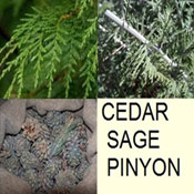 Cedar, Pinon, Sage, the soutwestern deserts natural cleaners