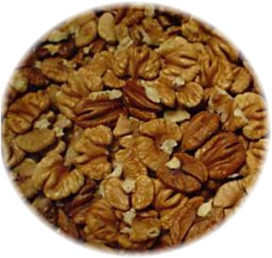 Hickory Nuts Are Perhaps The Most Delicious Nut That Can Be Grown In Midwest Even Surping Pecan For Flavor Author S Opinion